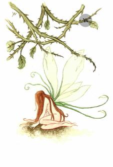 fairu faery art